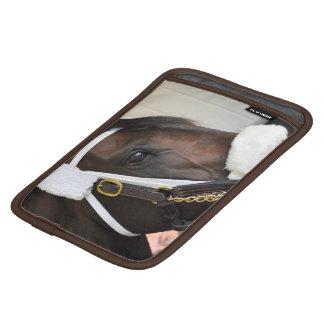Ollysilverexpress iPad Mini Sleeves