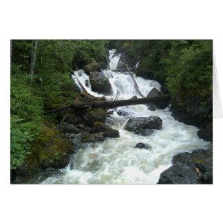 Olney Creek Card