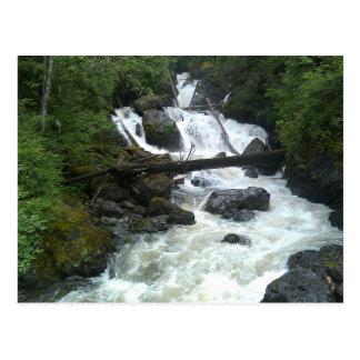 Olney Creek Postcard