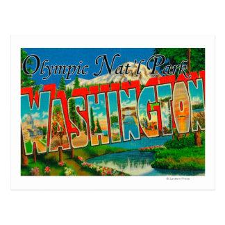 Olympic Nat'l Park, Washington Postcard