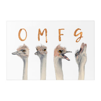 OMFG Ostriches Acrylic Wall Art