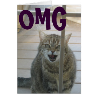 omg cat happy birthday card