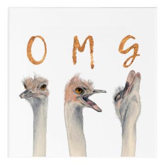 OMG Ostriches Acrylic Wall Art