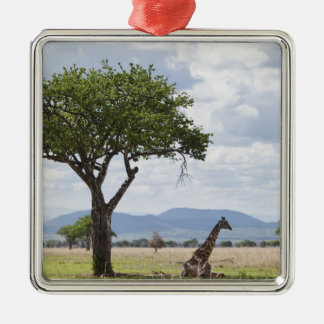 On safari in Mikumi National Park in Tanzania, Metal Ornament