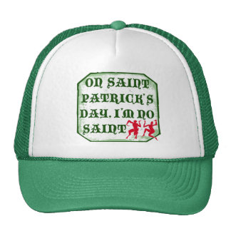 On St. Patrick´s Day, I´m no Saint Mesh Hat