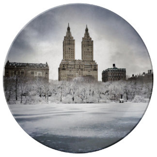 On The Edge Of Frozen In Central Park Porcelain Plates