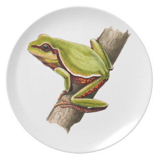 ON THE EDGE PLATE