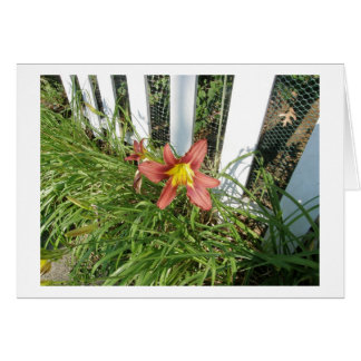 On The Fence Card