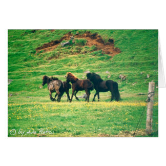 on the grass greeting card