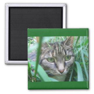 On the Hunt Cat Magnet