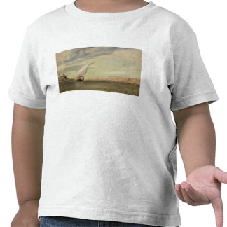On the Nile oil on canvas Shirts