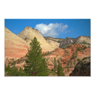 On the Road to Zion National Park Art Photo