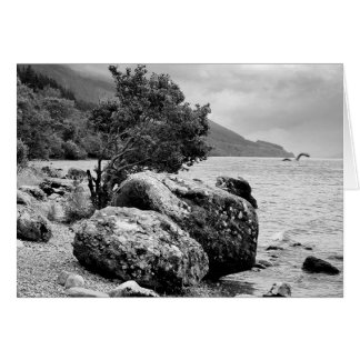 On the shores of Loch Ness with the monster Greeting Cards