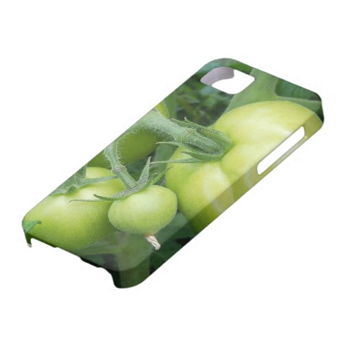 On The Vine iPhone 5 Case