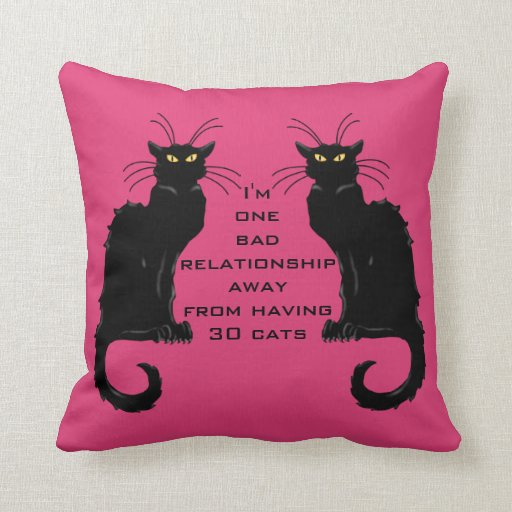 One Bad Relationship Away From Having 30 Cats Pillows