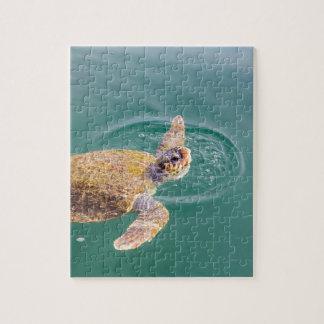 One big swimming sea turtle Caretta Jigsaw Puzzle