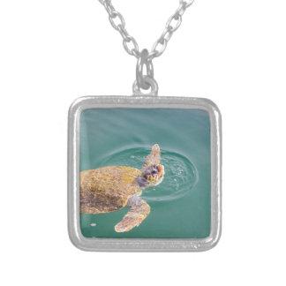 One big swimming sea turtle Caretta Silver Plated Necklace