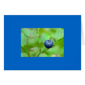 One Blueberry Card