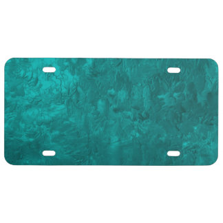one color painting aqua license plate
