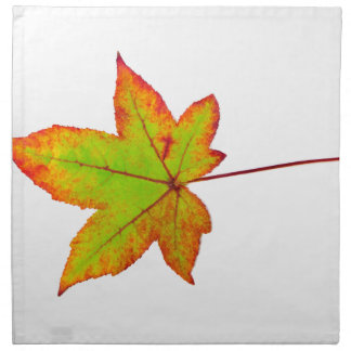 One colorful maple leaf in autumn on white napkin
