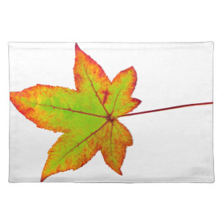 One colorful maple leaf in autumn on white placemat