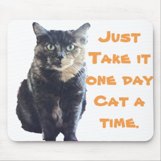 One Day Cat a Time Mouse Pad