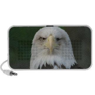 One-Eyed American Bald Eagle Postage Speaker