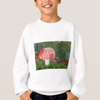 One fly agaric with green moss in fall season sweatshirt