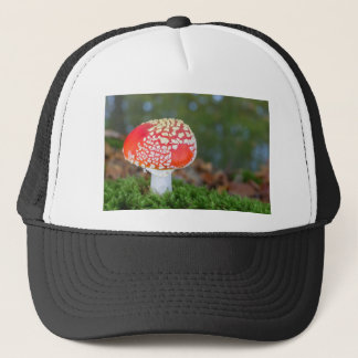 One fly agaric with green moss in fall season trucker hat