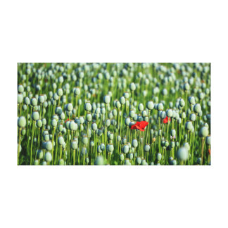 One in a Crowd Canvas Print