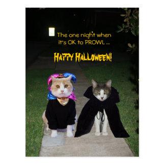 One Night It's OK to PROWL Postcard