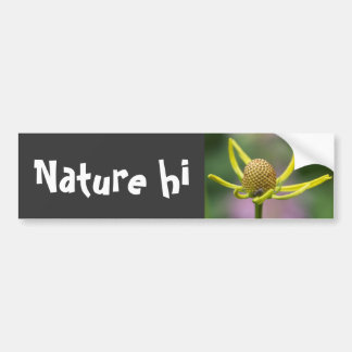 one nite only color car bumper sticker