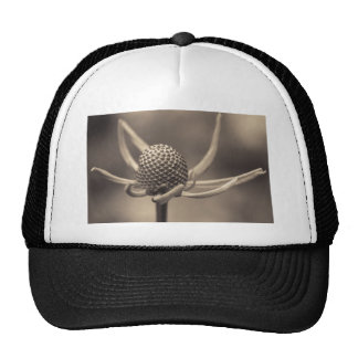 one nite only mesh hat