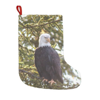 One of A Kind Stocking for that Eagle Lover