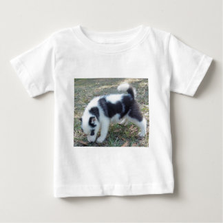 One of our super unique Husky puppies! Shirts
