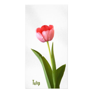 One Pink Spring Tulip Nature Floral Photo Personalised Photo Card