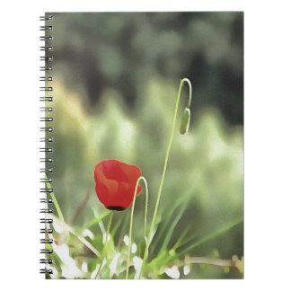 One Poppy Notebooks