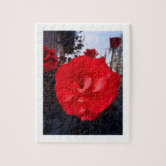 One Red Rose Jigsaw Puzzle