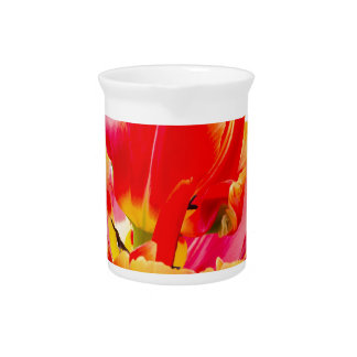 One red tulip flower on white background beverage pitchers
