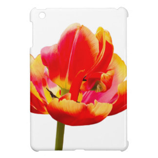 One red tulip flower on white background iPad mini cases