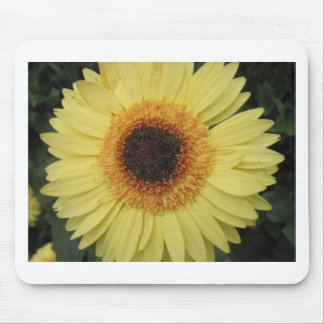 One Sunburst Flower Mouse Pad