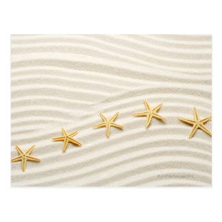 One unstraight row of starfishes postcard