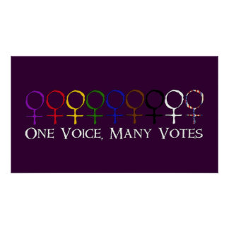 One Voice, Many Votes Poster