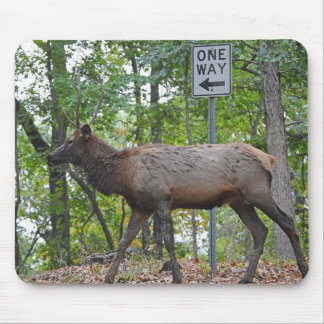 One Way Subordinate Rut Weary Young Bull Elk Mouse Pad