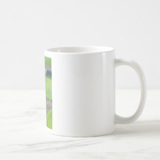 One white newborn lamb standing in green grass coffee mug