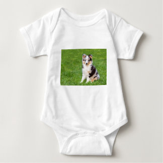 One young sheltie dog sitting on grass baby bodysuit