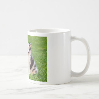 One young sheltie dog sitting on grass coffee mug