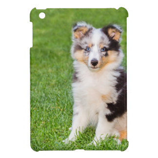 One young sheltie dog sitting on grass iPad mini covers