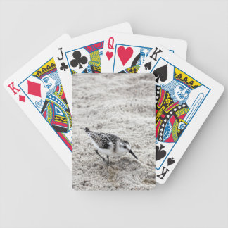 One Young Snowy Plover Bird Bicycle Playing Cards