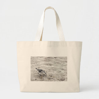 One Young Snowy Plover Bird Large Tote Bag